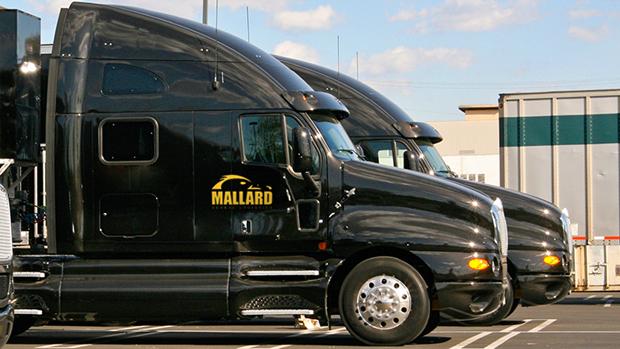 Mallard Global Logistics